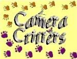 CameraCritters1