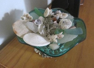 Sea glass Coral Sand Dollars