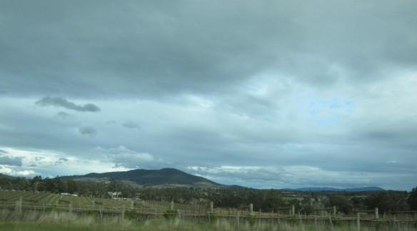 Vineyard hills