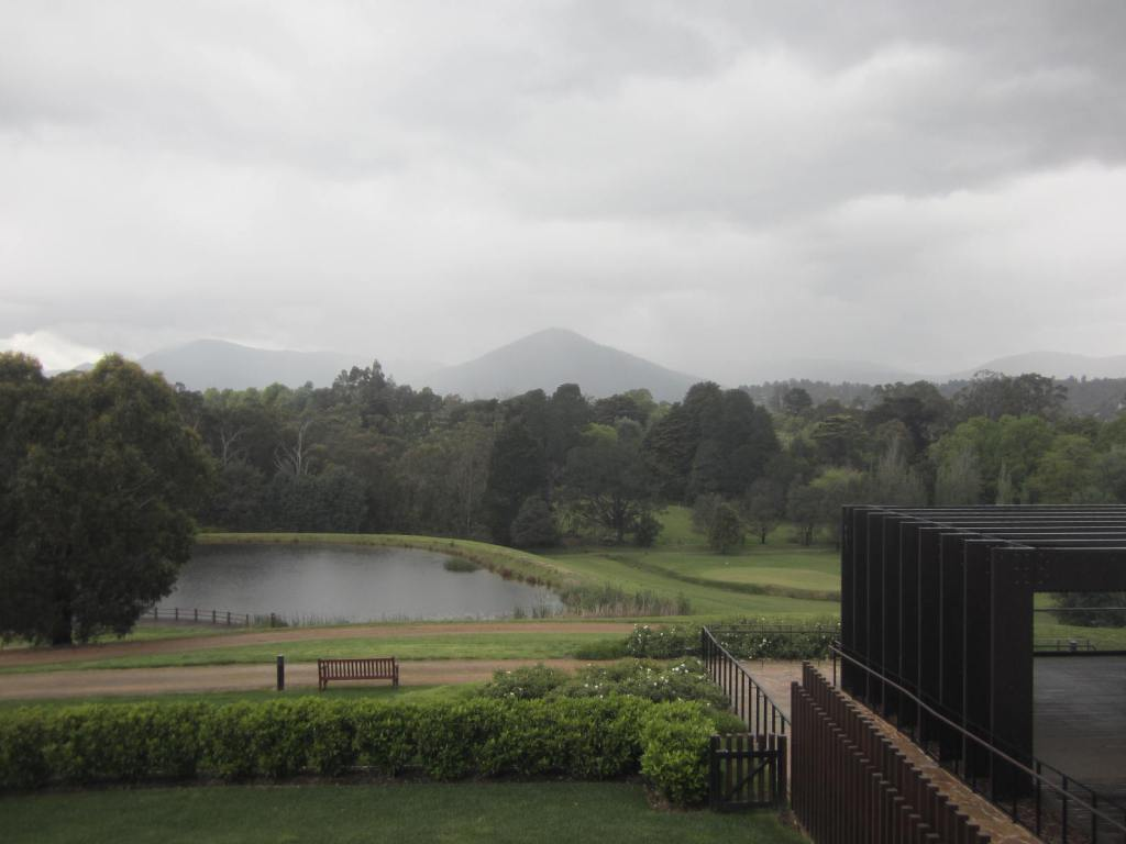 Misty day Healesville