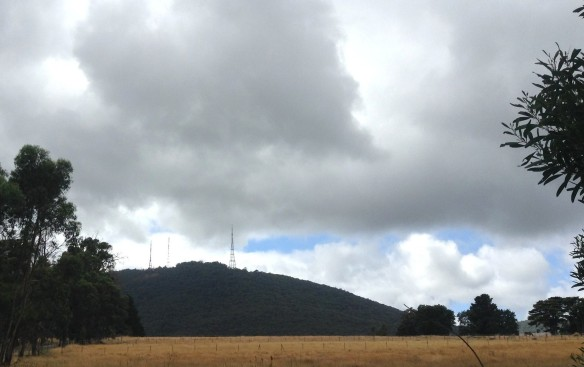 ~ The Dandenong from Liverpool Road ~ cloud over the masts ~ February 2014