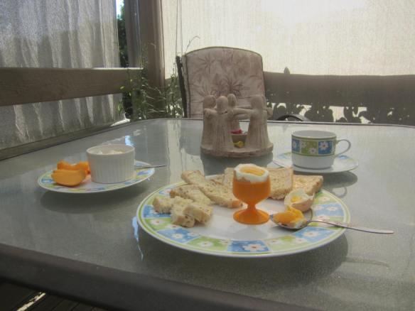 ~ Lunch in the sun ~ Yello yolked egg and Yogurt ~