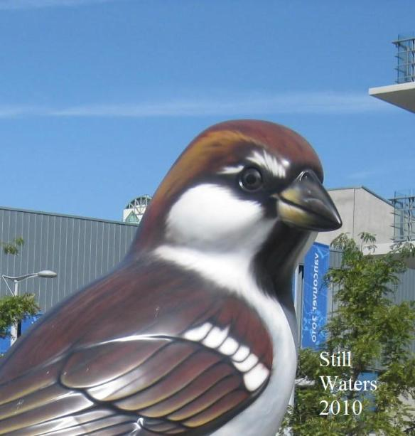 Large Bird Head Vancouver 2010