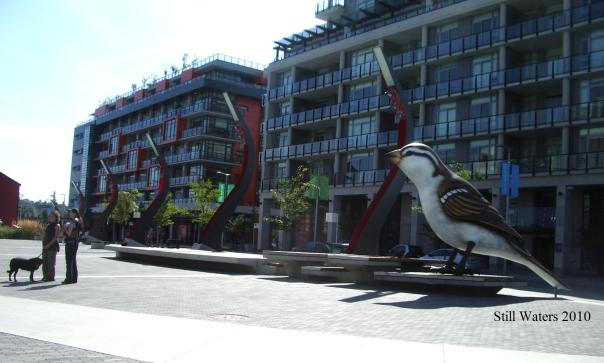 One of the birds 2010