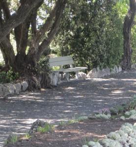 bench crop