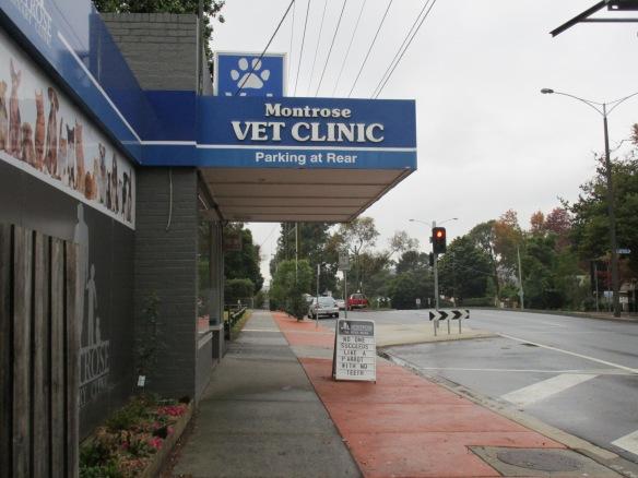 Vet clinic