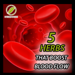 Herbs-That-Boost-Blood-Flow